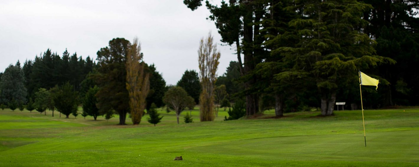 Waikouaiti Golf Course
