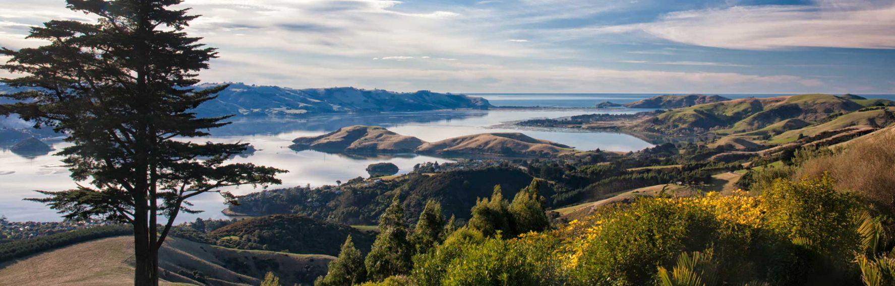 Otago Peninsula scenic shot