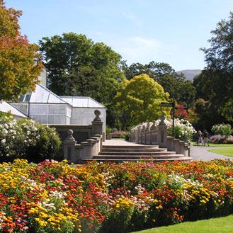 EYS - Gardens