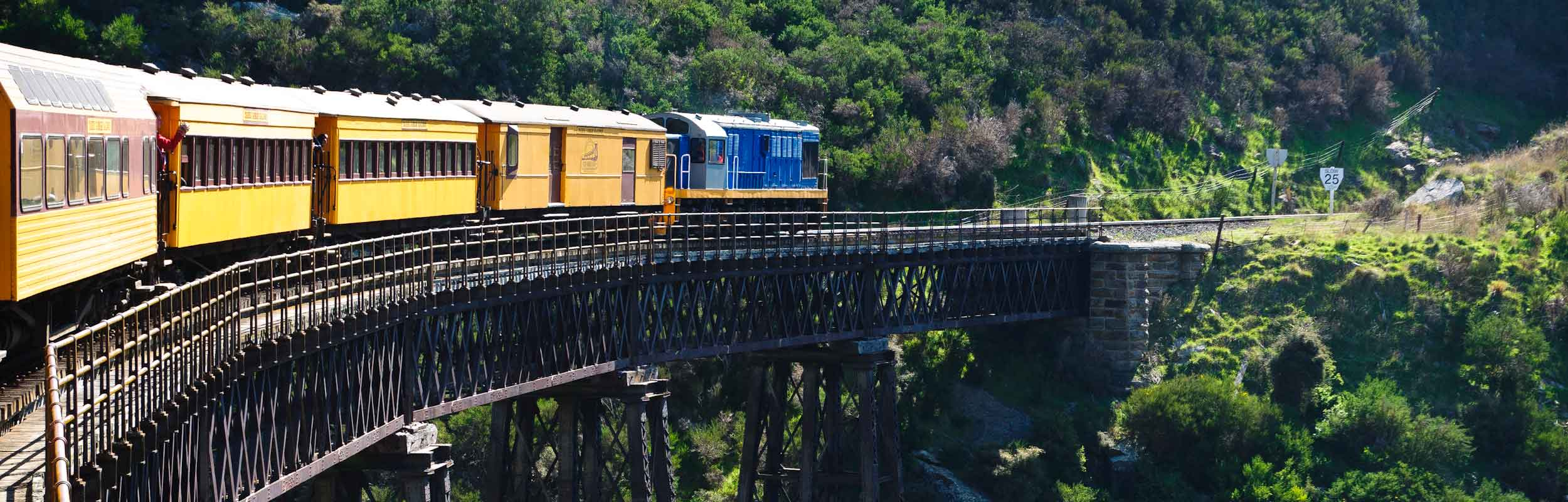 Taieri Gorge Railway - train on Wingatui Viaduct