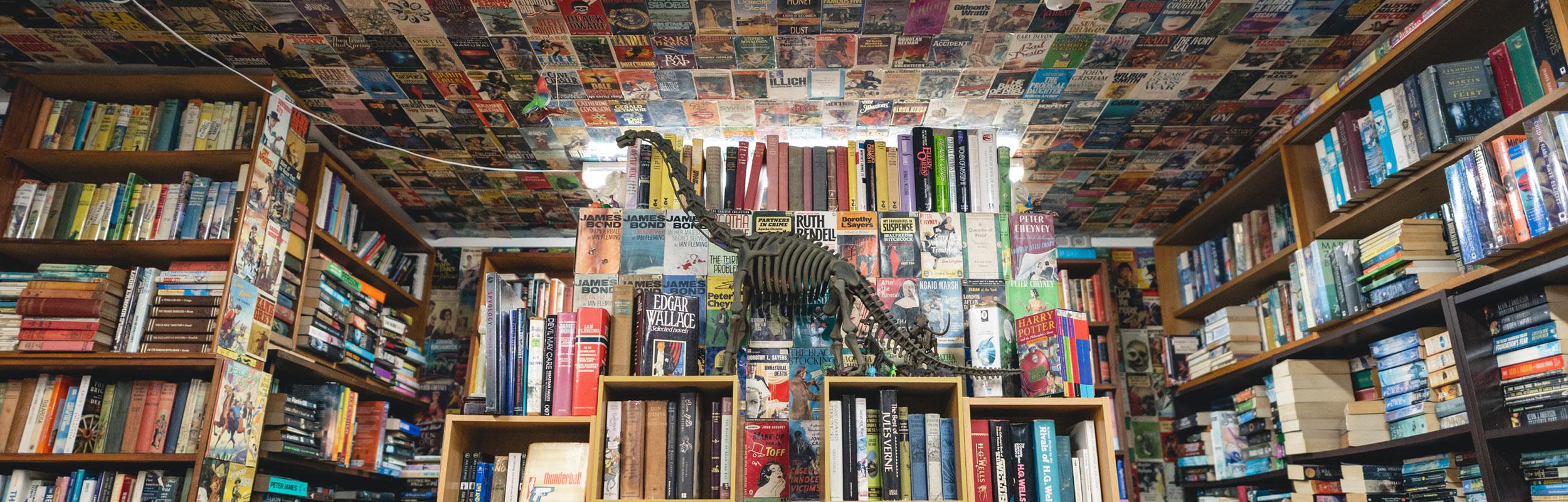Dead Souls Book Shop