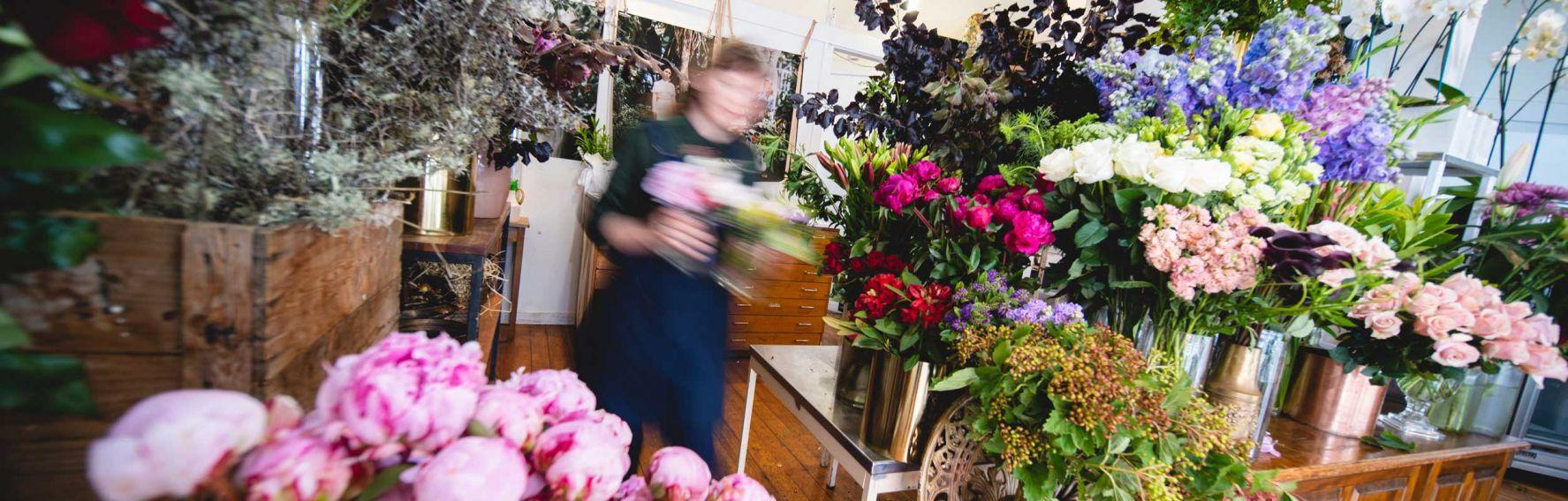 Florist in Dunedin