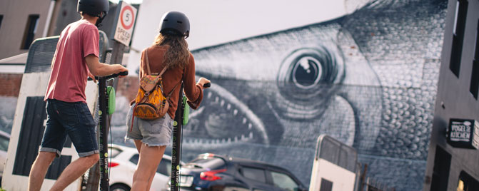 Street Art Phlegm Fish
