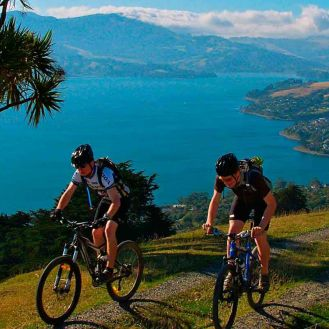 Otago Peninsula bike ride