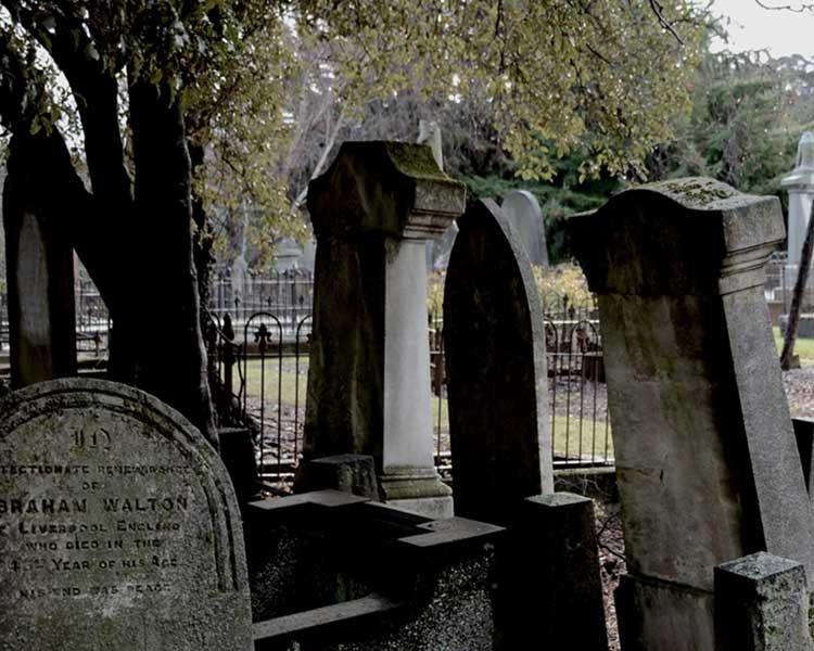 Screen Cemetery