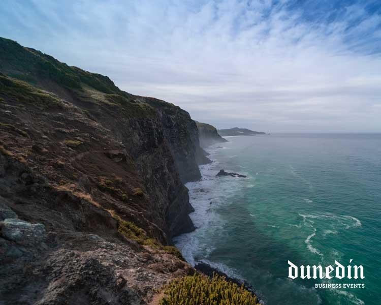 Karetai track cliffs