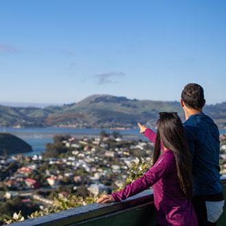 Day tripping in Dunedin