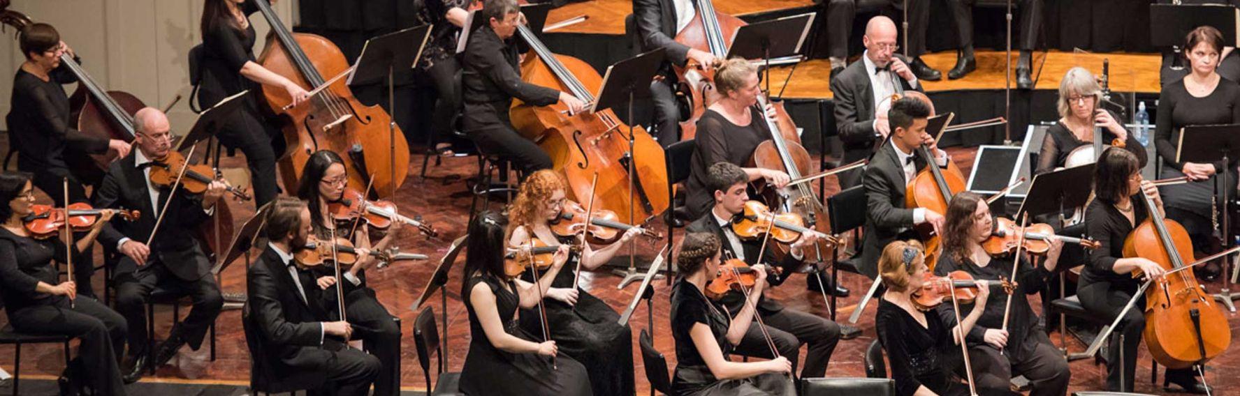 The Dunedin Symphony Orchestra
