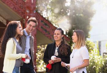 Factors to consider when choosing Dunedin