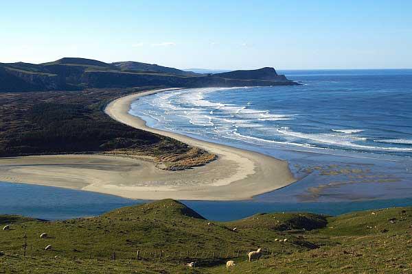 Beaches ōtepoti Dunedin New Zealand Official Website